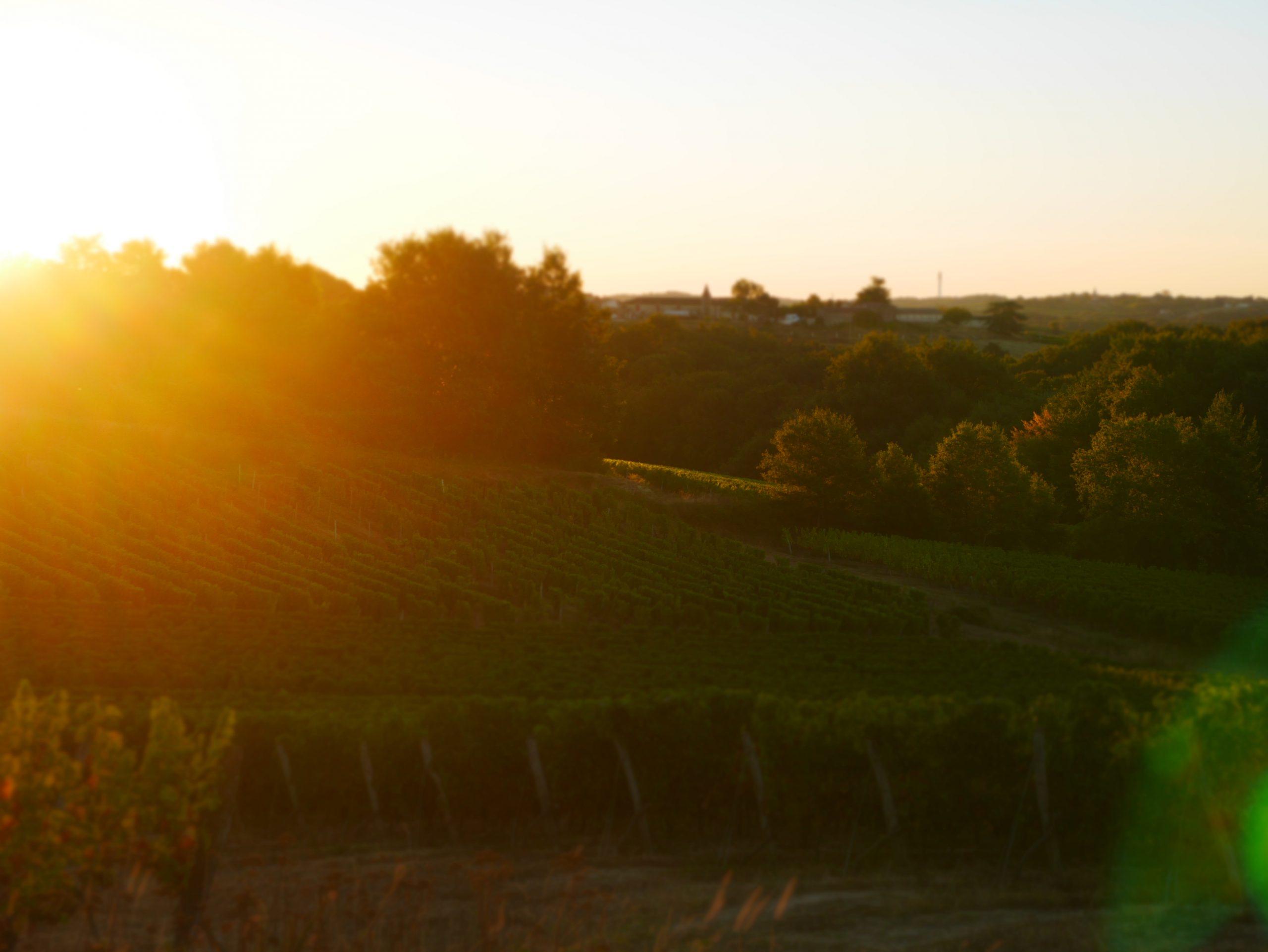 lever de soleil à Larrayan semens