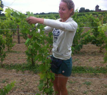 Aurelie VIALA soins aux jeunes vignes du château de Garbes