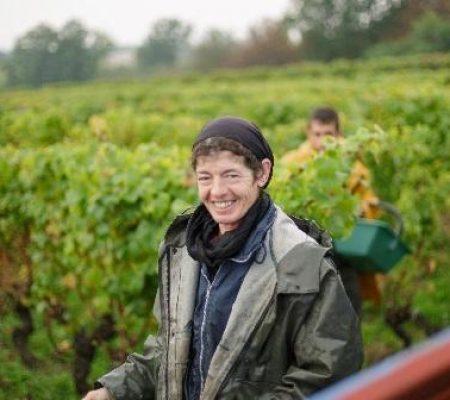 Château de Garbes - Grand vins de Bordeaux - Viticulteur récoltant - les vendanges de nos vignes au château